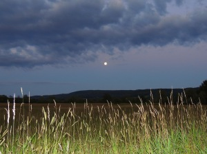 blue moon rise Jul 30, 2015