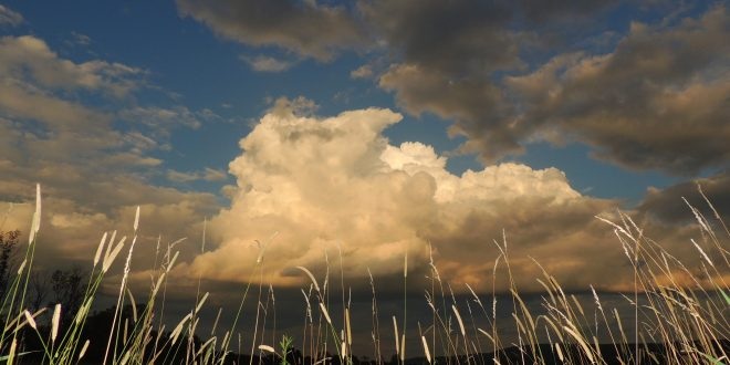 Night portrait cumulus cloud in the east Aug 14, 2015 by Patti Witten